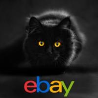 Luxus Katzen Kratzbäume, Kratztonnen und Katzenhäuser!