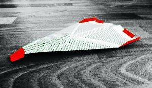 Katzen Spielzeug Papierflieger Veloci zum selber machen