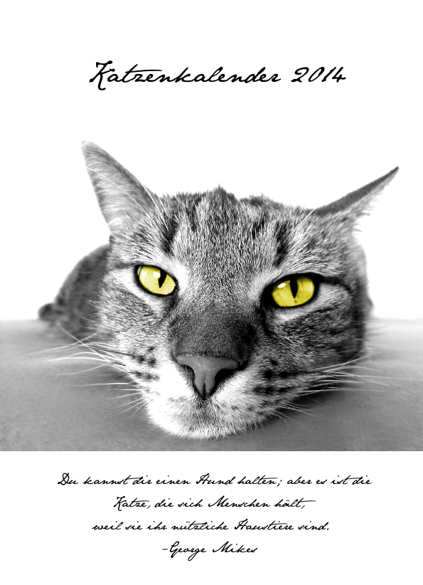 Katzen Monatskalender