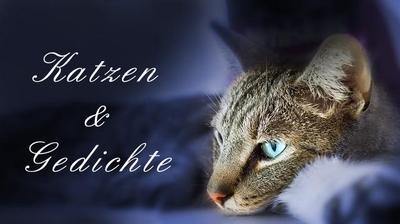 Katzen und Gedichte